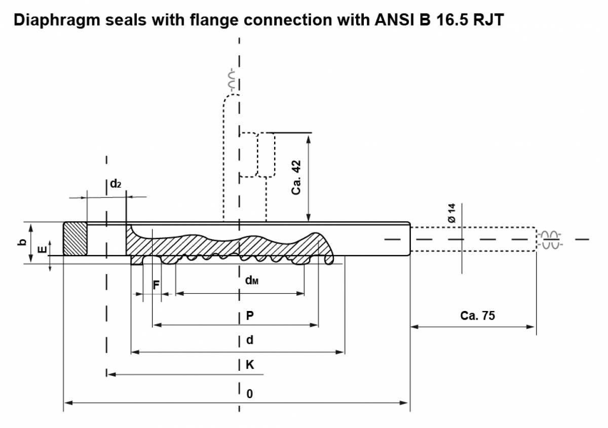 Diaphragm seals with flange connection with ANSI B 16.5 RJT