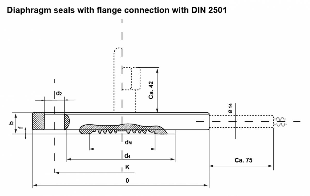 Diaphragm seals with flange connection with DIN 2501