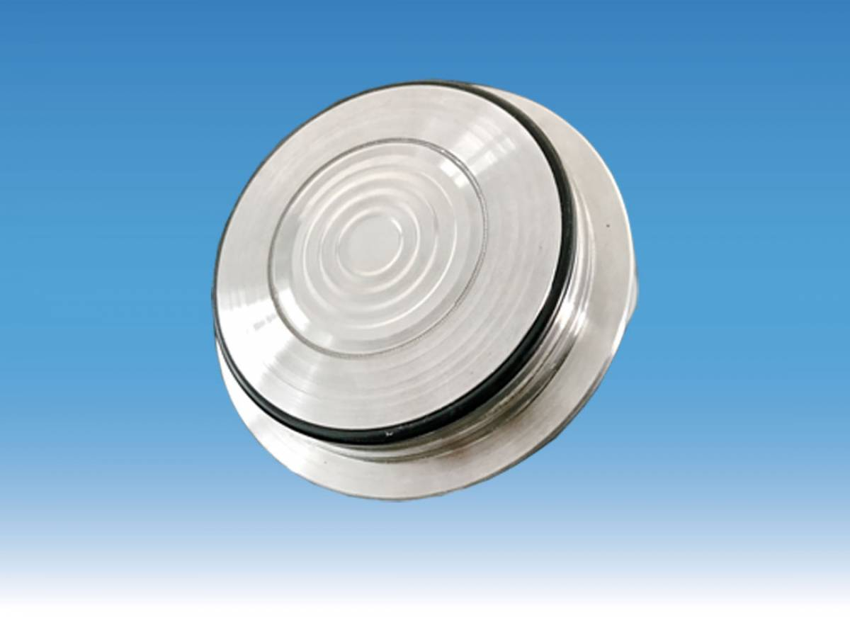 Diaphragm seal Varivent